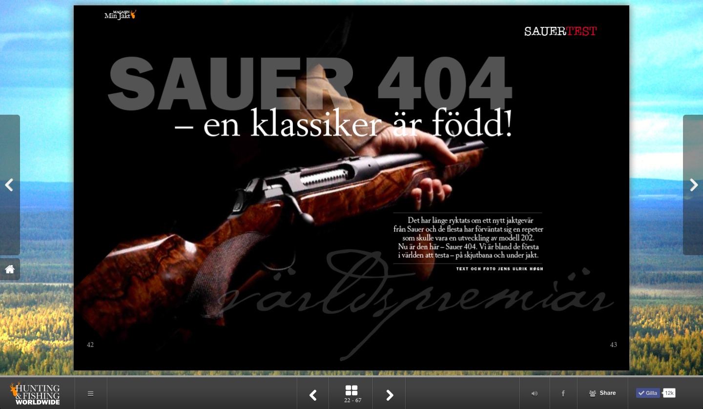 Sauer screenshot